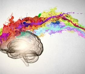4 интересных факта о нашем мозге